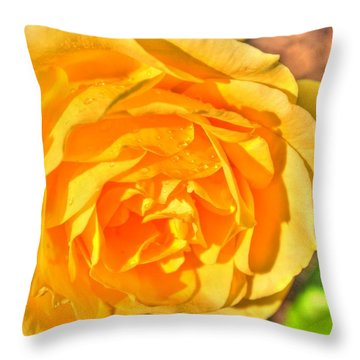 Throw Pillow featuring the photograph After The Rain by Michael Frank Jr