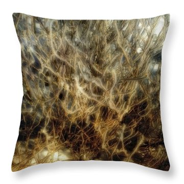 After The Snow Throw Pillow by Ellen Heaverlo