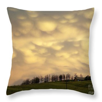 After The Storm Throw Pillow by Dorrene BrownButterfield