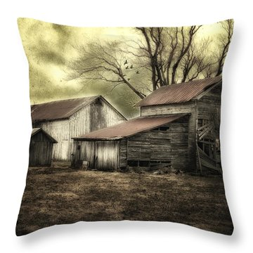 Throw Pillow featuring the photograph After The Storm by Mary Timman