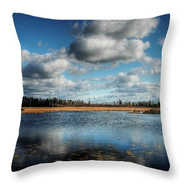Afternoon Reflections At The Marsh Throw Pillow by Heather  Rivet