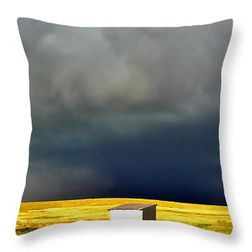 Afternoon Storm Throw Pillow by Ellen Heaverlo