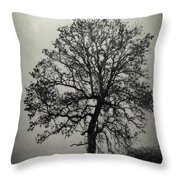 Age Old Tree Throw Pillow by Steve McKinzie