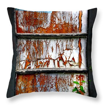 Throw Pillow featuring the photograph Aged Door by Amy Sorrell