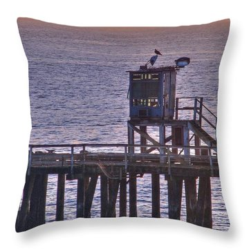 Throw Pillow featuring the photograph Aging Pier by Chris Anderson