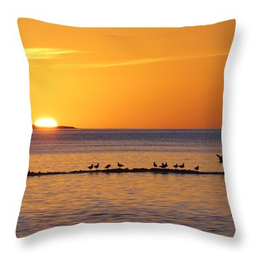 Throw Pillow featuring the photograph Agua Verde Sunrise by Anne Mott