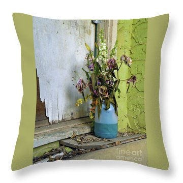 Aint Nobody Home Throw Pillow