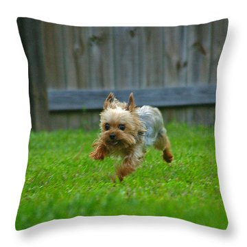 Throw Pillow featuring the photograph Airborn by Brian Wright