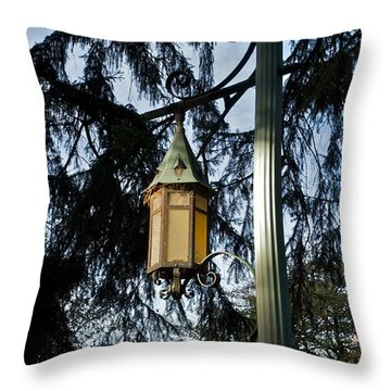 Throw Pillow featuring the photograph Akers Night by Joseph Yarbrough
