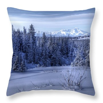 Throw Pillow featuring the photograph Alaskan Winter Landscape by Michele Cornelius