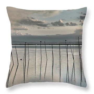 Albufera Gris. Valencia. Spain Throw Pillow