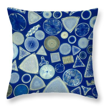 Algae, Fossil Diatoms, Lm Throw Pillow by M. I. Walker