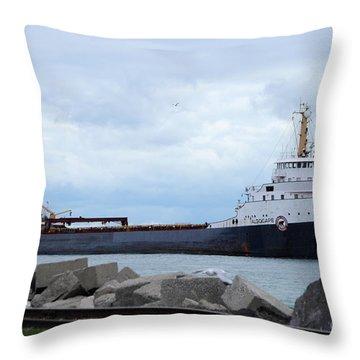 Algocape Throw Pillow