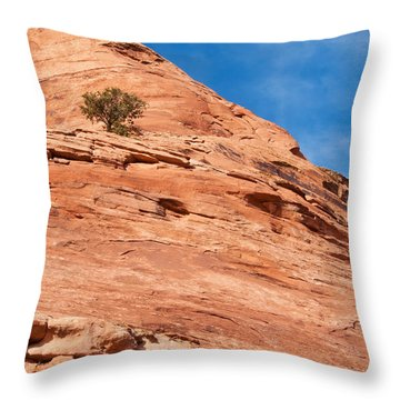 All Alone Throw Pillow by Bob and Nancy Kendrick