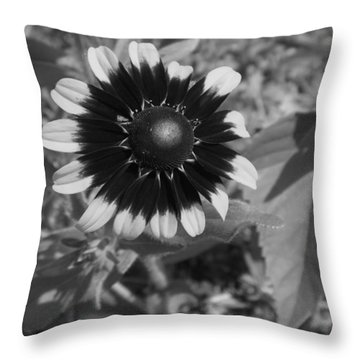 All Dressed Up And No Place To Go Throw Pillow by Elizabeth Sullivan