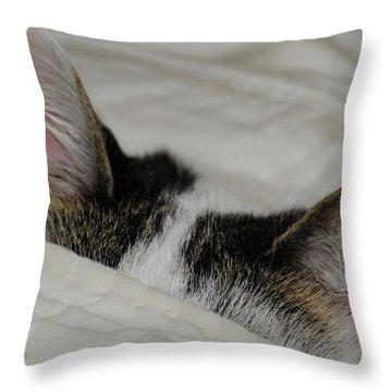 All Ears Throw Pillow by Wanda Brandon