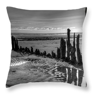 Throw Pillow featuring the photograph All That Remains by Michele Cornelius