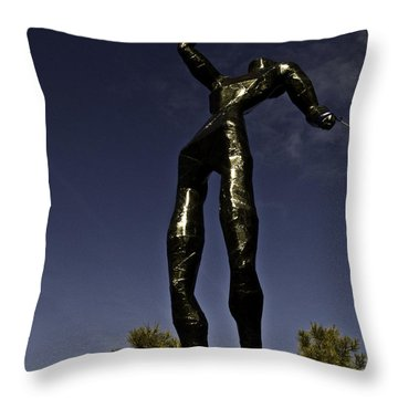 Throw Pillow featuring the photograph All Wounded Warriors  by Larry Depee