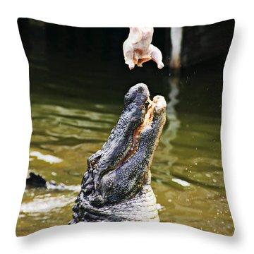 Alligator Feeding Throw Pillow by Garry Gay