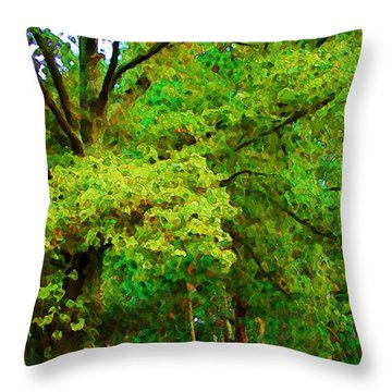 Throw Pillow featuring the photograph Almost Fall by Steven Lebron Langston
