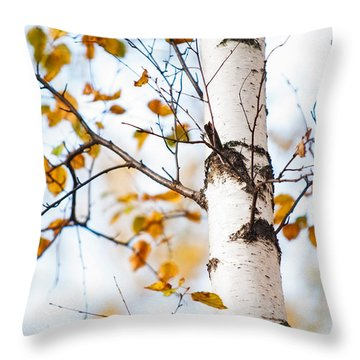 Almost Naked. Shy Girl Throw Pillow by Jenny Rainbow