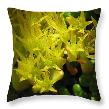 Almost Undersea Throw Pillow by Rory Sagner