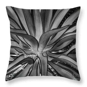 Aloe Black And White Throw Pillow by Rebecca Margraf