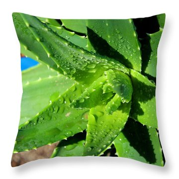Throw Pillow featuring the photograph Aloe by M Diane Bonaparte