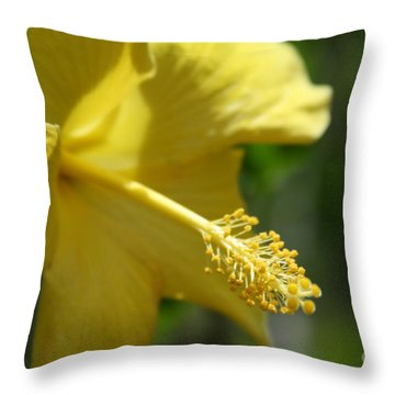 Alohalani Pua Melia Lei Manakai Throw Pillow by Sharon Mau