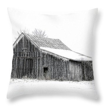 Throw Pillow featuring the photograph Alone In The Snow by Mary Timman