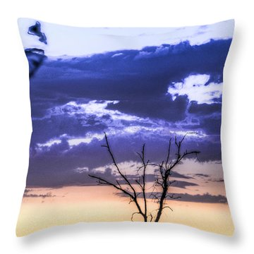 Throw Pillow featuring the photograph Alone by Marta Cavazos-Hernandez