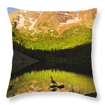 Alone On A Rock Throw Pillow