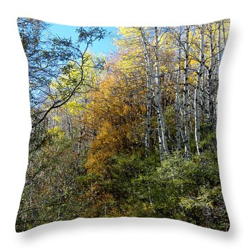 Throw Pillow featuring the photograph Along The Back Road by Vicki Pelham