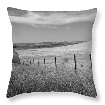 Throw Pillow featuring the photograph Along The Line by Kathleen Grace