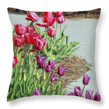 Along The Path Throw Pillow by Billie-Jo Miller