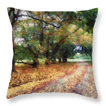 Along The Path Under The Trees Throw Pillow by Susan Savad