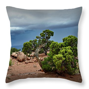 Along The Rim Throw Pillow by Marty Koch