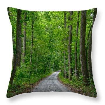 The Road To Thomas Jefferson's House Throw Pillow