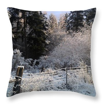 Along The Way Throw Pillow by Rory Sagner