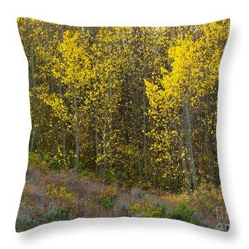 Alpine Surprise Throw Pillow