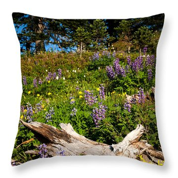 Throw Pillow featuring the photograph Alpine Wildflower Meadow by Karen Lee Ensley