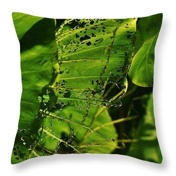 Already Eaten Taro Leaves Throw Pillow by Craig Wood