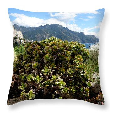 Amalfi Coast Succulents Throw Pillow