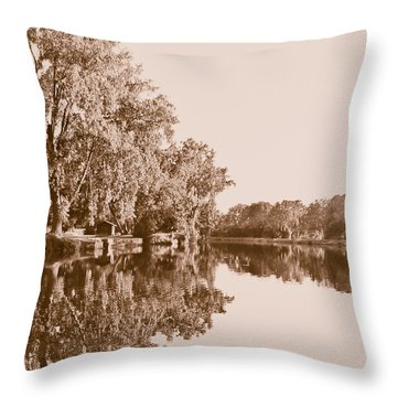 Throw Pillow featuring the photograph Amber Reflection by Sara Frank