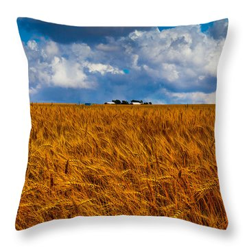 Amber Waves Of Grain Throw Pillow by Doug Long