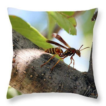 Ambush Throw Pillow by Billie-Jo Miller