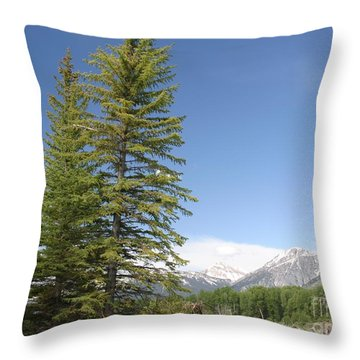 Throw Pillow featuring the photograph America The Beautiful by Living Color Photography Lorraine Lynch