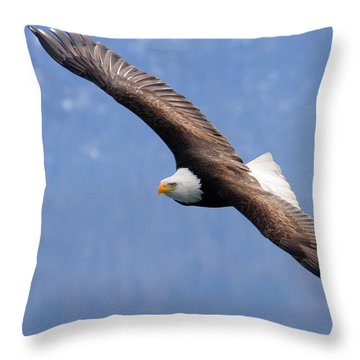 Throw Pillow featuring the photograph American Bald Eagle by Doug Lloyd