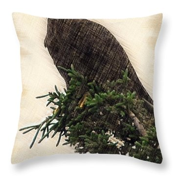 American Bald Eagle In Tree Throw Pillow by Dan Friend