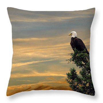 Throw Pillow featuring the photograph American Eagle Sunset by Dan Friend